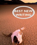 cover for best new writing 2017