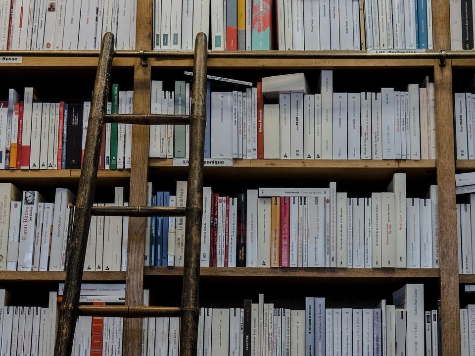 bookshop-1759619_960_720